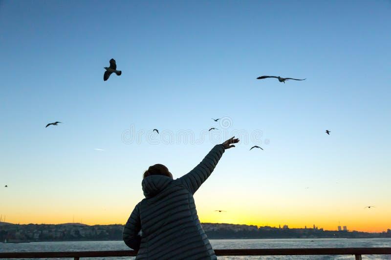Ljus soluppgång och kvinna som vinkar med välkomnande havsfiskmåsar för hand arkivbild