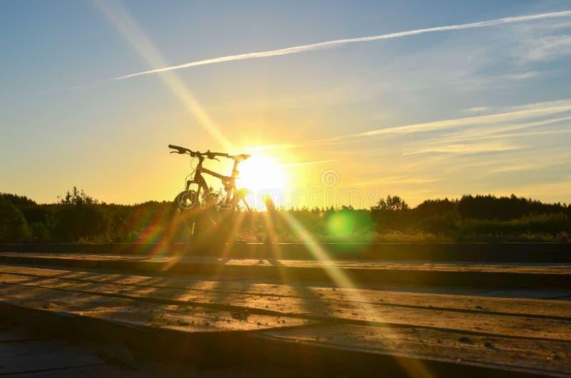 Ljus soluppgång på vägen nära floden på bakgrunden av en cykel Mountainbike i skog med solstrålar royaltyfria foton
