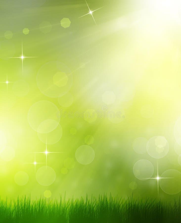 Ljus sommarbakgrund vektor illustrationer