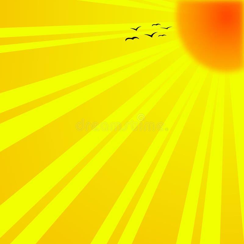 ljus sun royaltyfri illustrationer