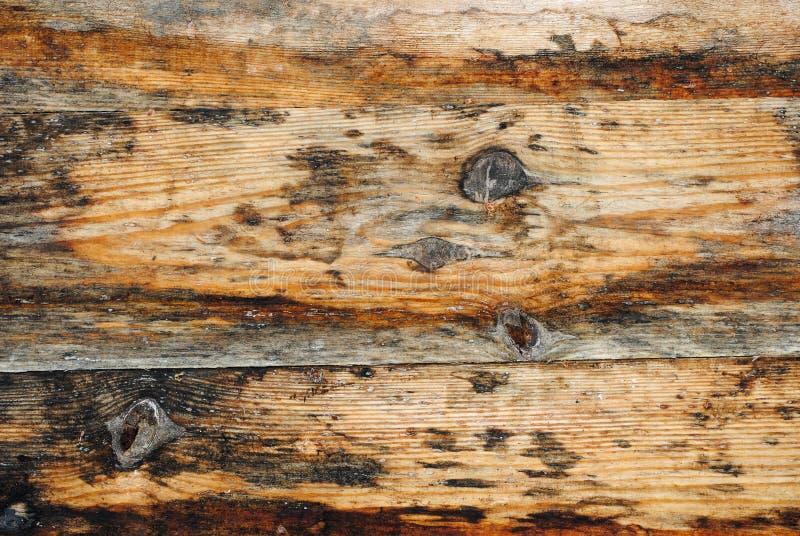 Ljus textur av gamla trätabellbräden royaltyfri bild