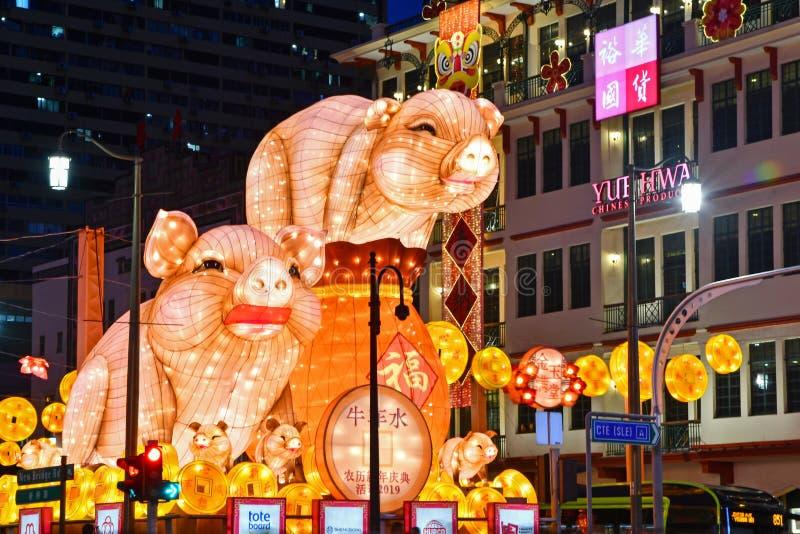 Ljus-Upp 2019 för nytt år för Singapore kineskvarter kinesiskt royaltyfri bild