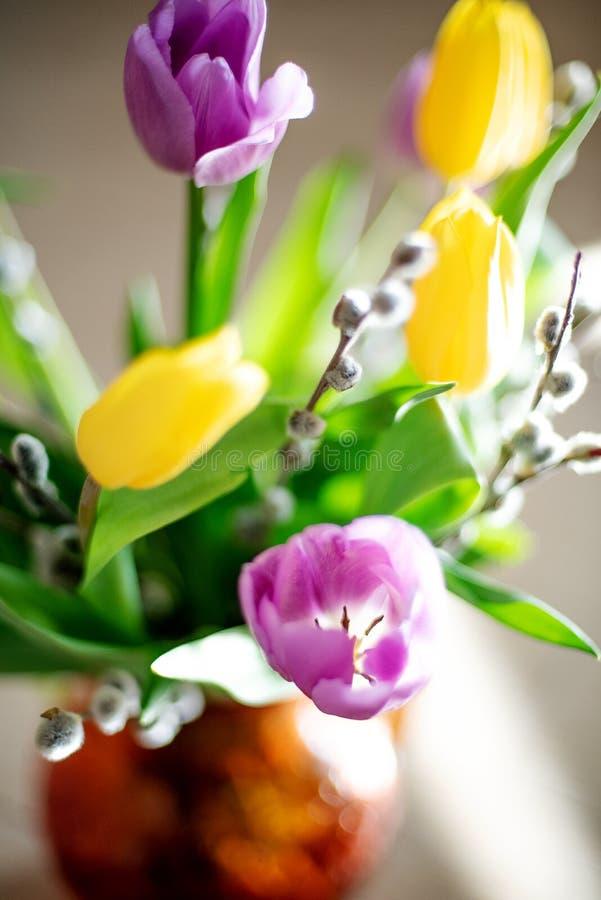 Ljus vårbukett av gula och purpurfärgade tulpan och filialpussypilar Påskordning av nya blommor royaltyfri fotografi