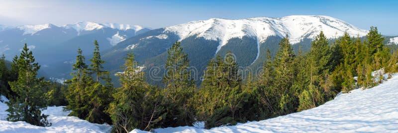 Ljus vinterdag i bergen royaltyfri fotografi