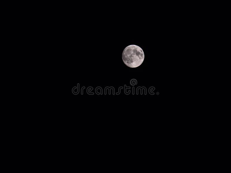 Ljus vit fullmåne i ett mörker, svart himmel royaltyfria foton