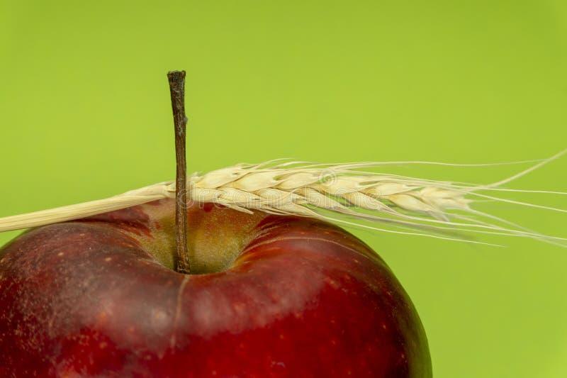 Ljusa Apple och öra av rågvete - grön bakgrund arkivbilder