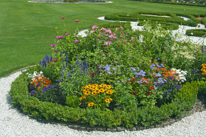 Ljusa blommor på blomsterrabatten royaltyfria bilder