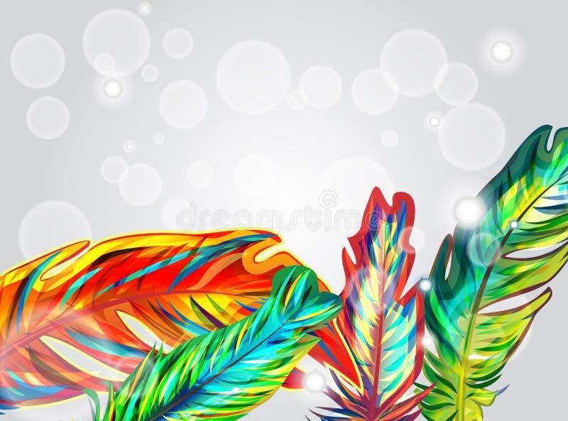 ljusa fjädrar vektor illustrationer