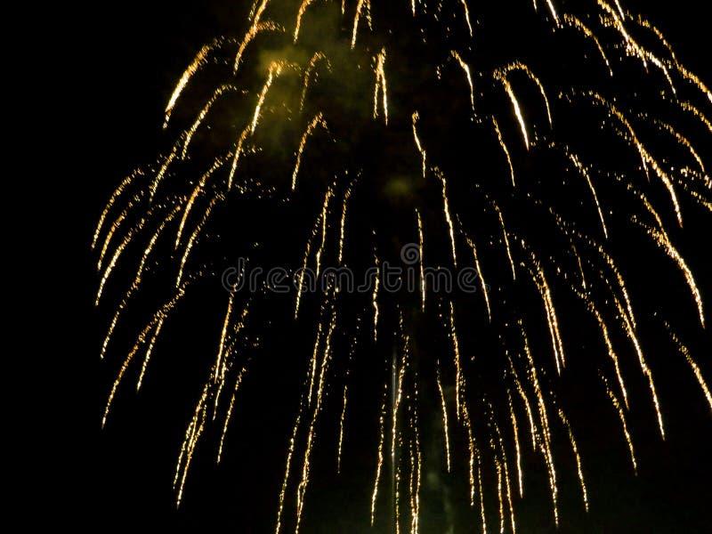 Ljusa guld- fyrverkerier tänder upp natthimlen arkivfoton