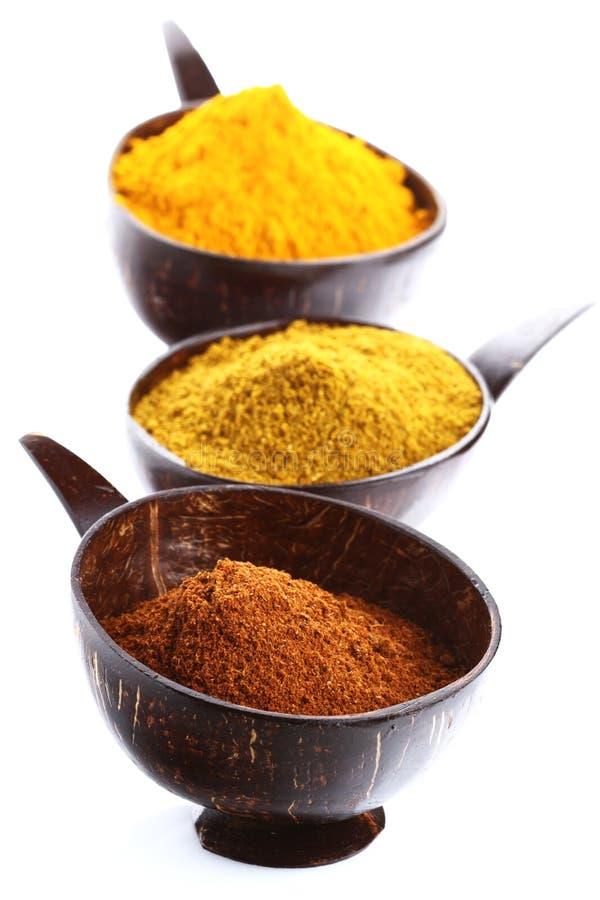 ljusa kryddor för powde för currymadras stapel royaltyfria foton