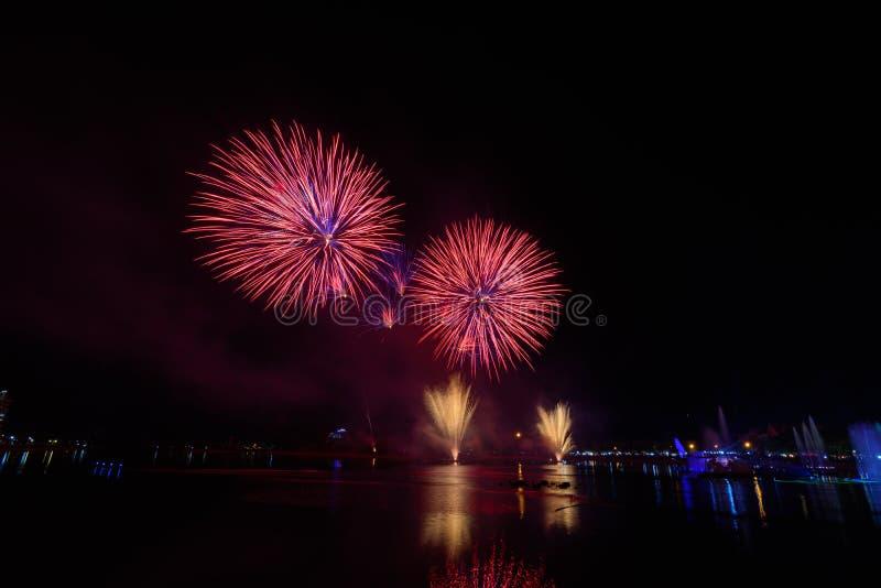 Ljusa och färgrika fyrverkerier mot en svart natthimmel fyrverkeri royaltyfri bild