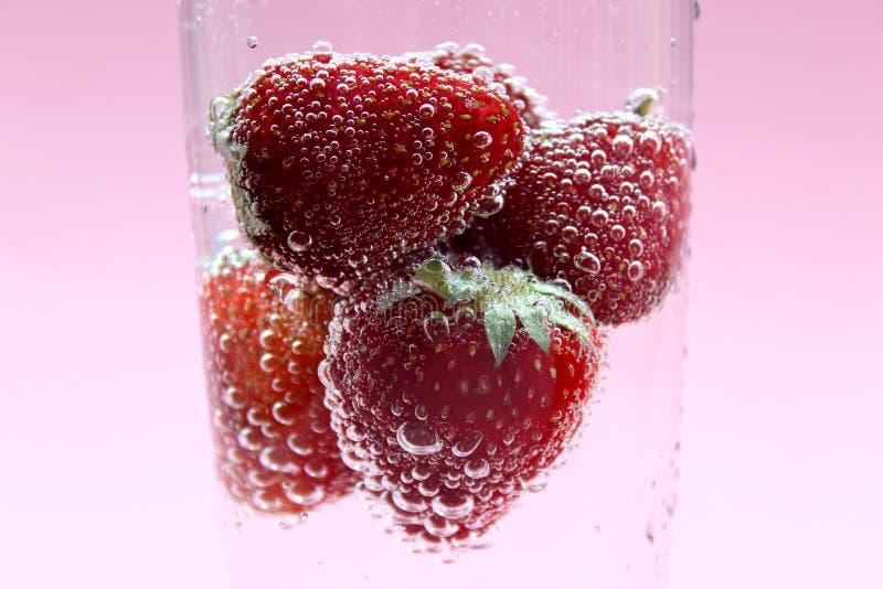 Ljusa röda nya jordgubbar med gröna sidor som svävar i kolsyrat vatten i ett exponeringsglas och som täcker med bubblor royaltyfri bild