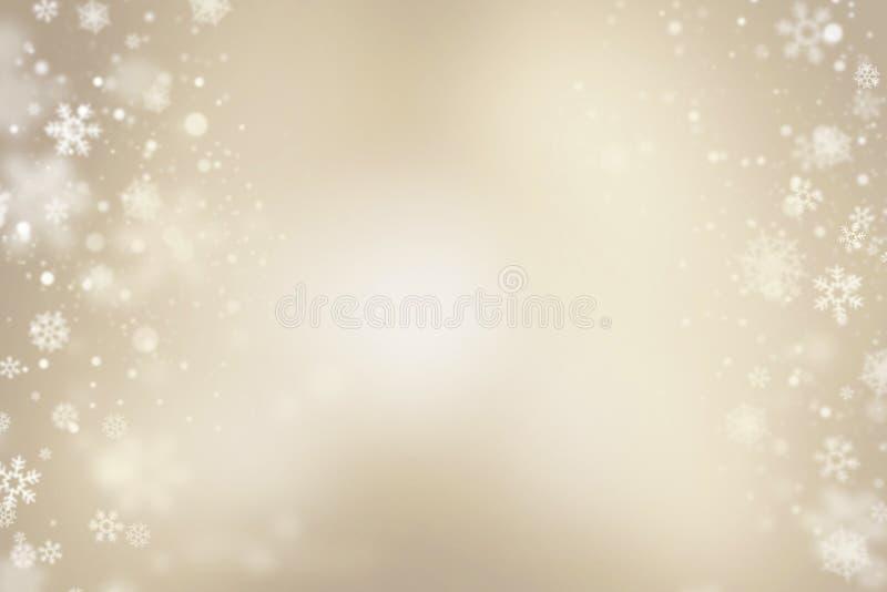 Ljusa Snowflakes vektor illustrationer