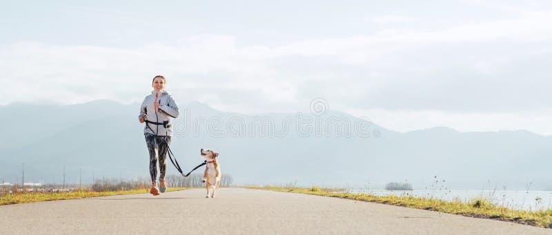 Ljusa soliga morgonCanicross övningar Kvinnliga körningar med hans beaglehund och lyckliga le royaltyfria foton