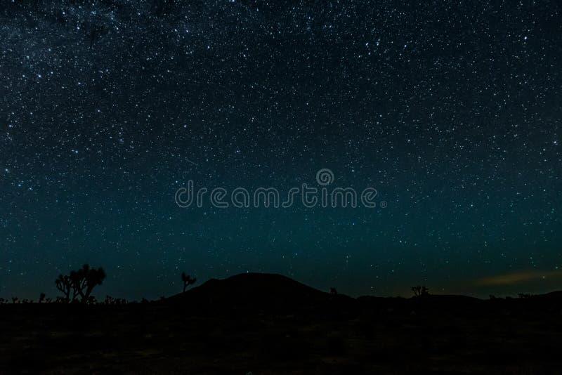 Ljusa stjärnor över Joshua Tree Desert royaltyfri bild
