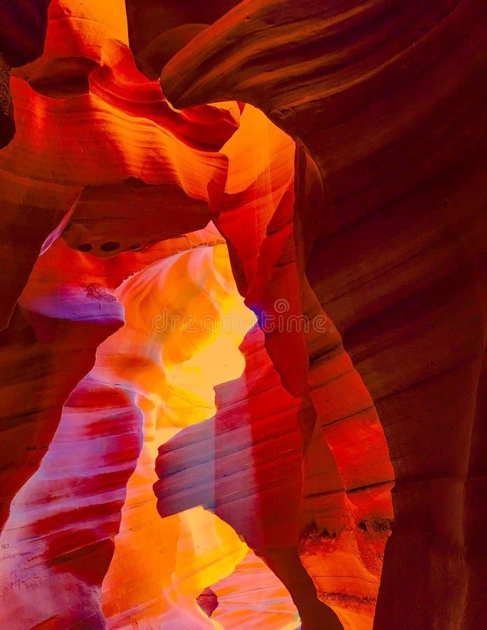 ljusa strålar för antilopkanjon arkivbild