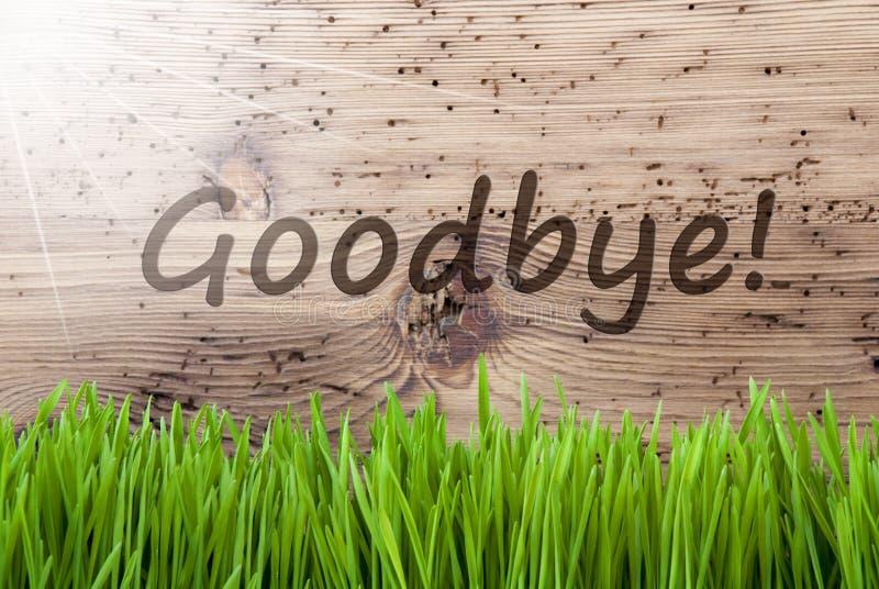Ljusa Sunny Wooden Background, gräs, textfarväl arkivbilder