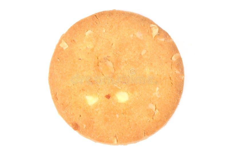 ljusbruna oats arkivbild