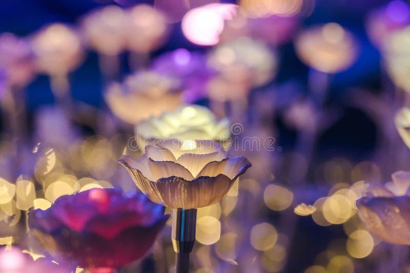 Ljusen dekoreras som blommor för att skapa härligt ljus arkivfoto
