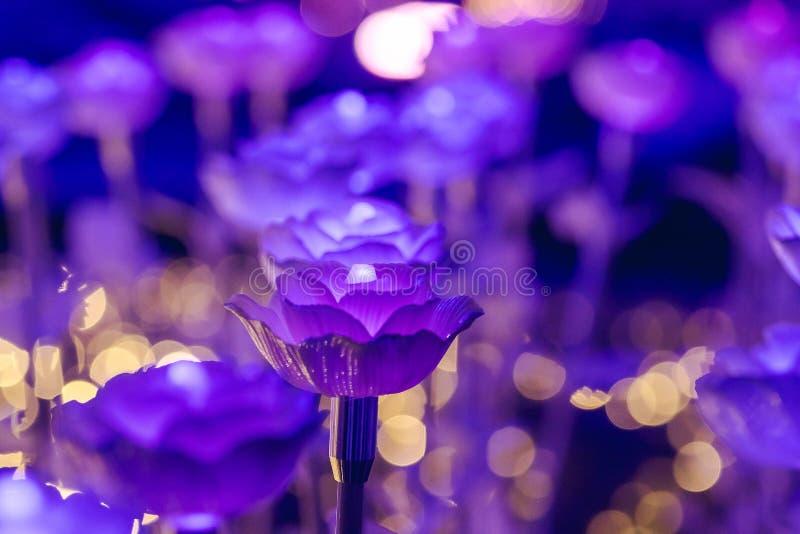 Ljusen dekoreras som blommor för att skapa härligt ljus arkivbild