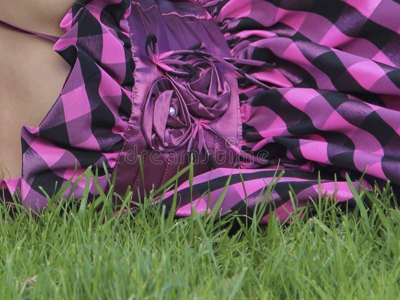 Ljusrosa rosa rosa kjolen på gröngräs arkivfoton