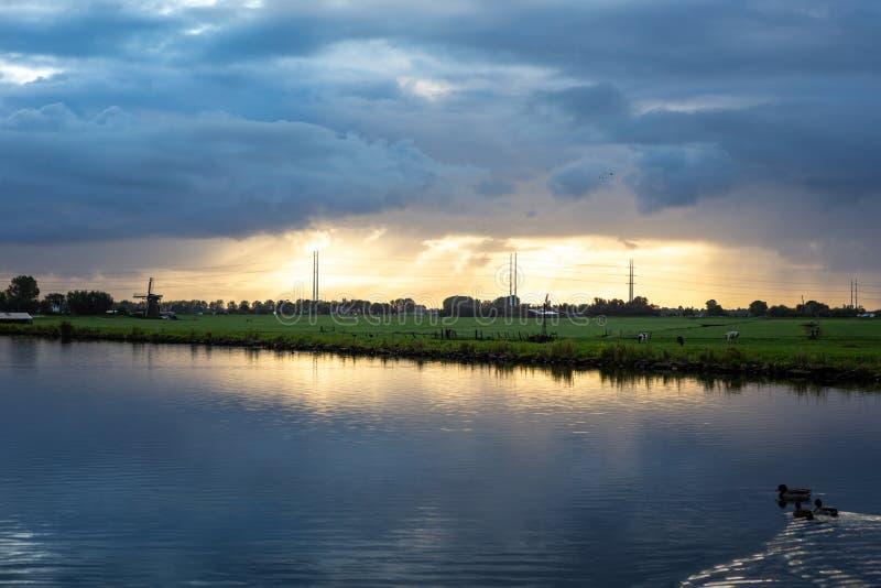 Ljusstrålande solstrålning skiner på de höga polerna i elnätet genom byn Nieuwe Wetering arkivbild