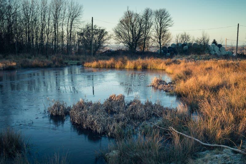 Ljust avbrott för gryning på ett djupfryst damm på den Wetley heden fotografering för bildbyråer
