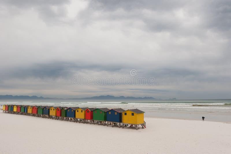 Ljust färgade strandkojor 4 arkivfoto