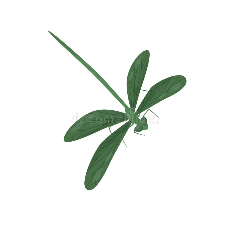 Ljust - grön slända Litet snabb-flyg kryp med den långa kroppen och två par av vingar Bräcklig varelse Plan vektor stock illustrationer
