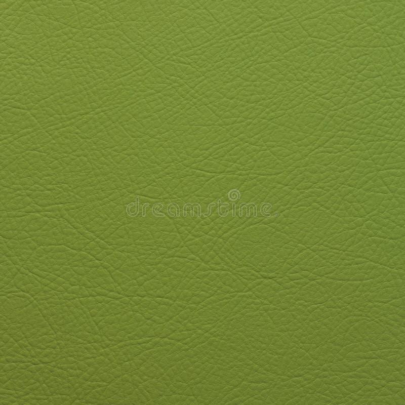 LJUST - grönt LÄDER TEXTURERAD BAKGRUND arkivfoton