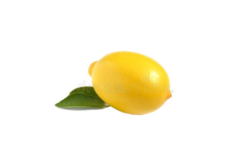 Ljust gult citron och citronblad på vit isolatbakgrund royaltyfri bild