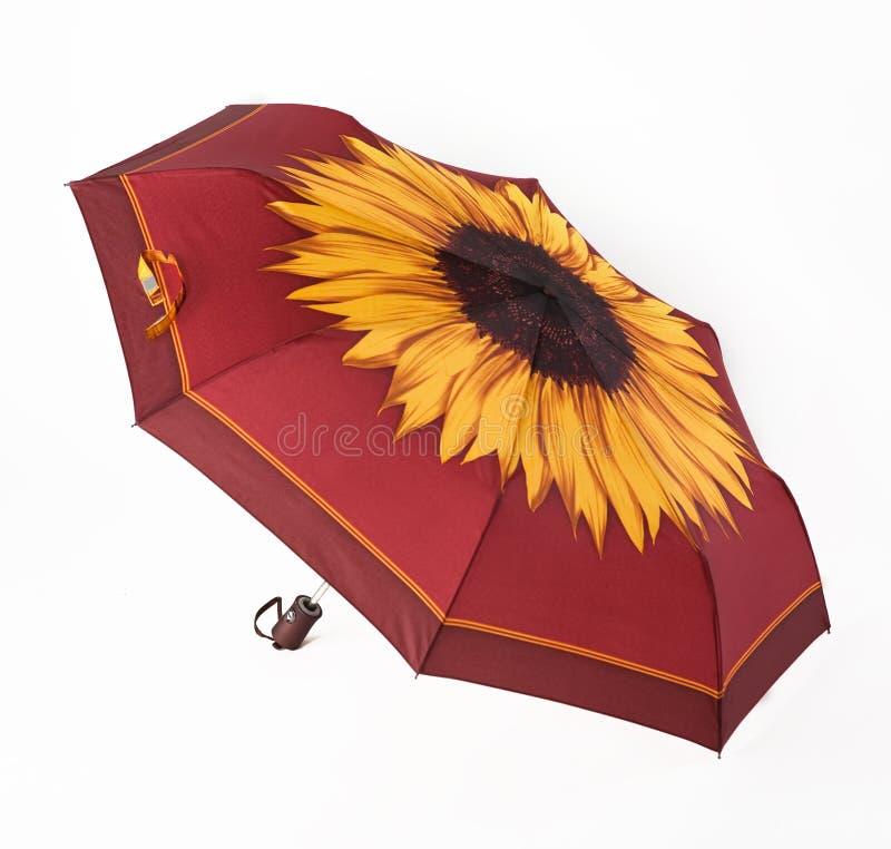 Ljust paraply arkivfoton