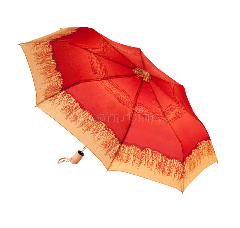 Ljust paraply royaltyfri fotografi