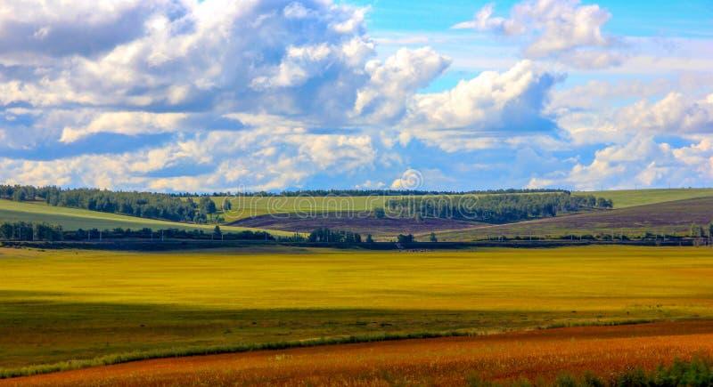 Ljust pittoreskt sommar- eller höstlandskap av ryska fält, arkivbild
