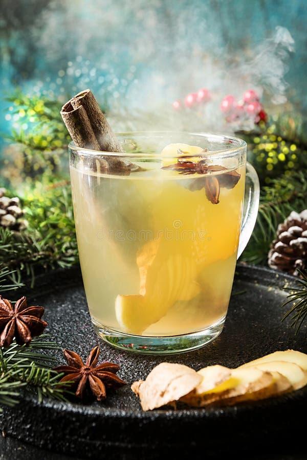 Ljust rödbrun drink för vinter royaltyfri bild