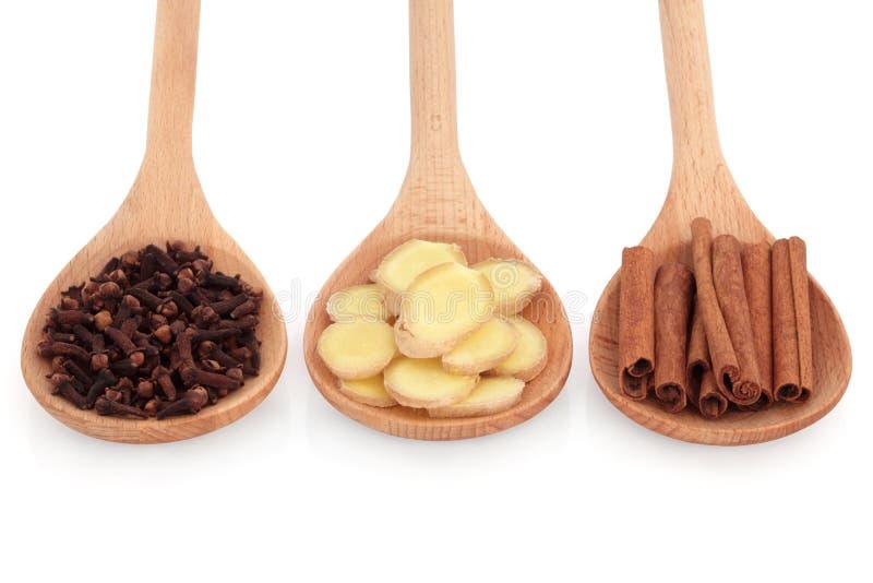 ljust rödbrun krydda för kanelkryddnejlika royaltyfri foto