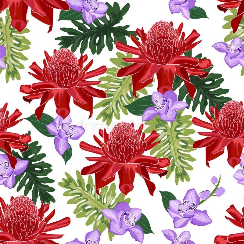 Ljust rödbrun sömlös modell för röd fackla med den purpurfärgade orkidén vektor illustrationer