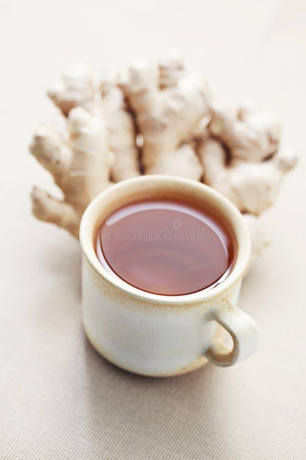 Ljust rödbrun tea royaltyfria bilder