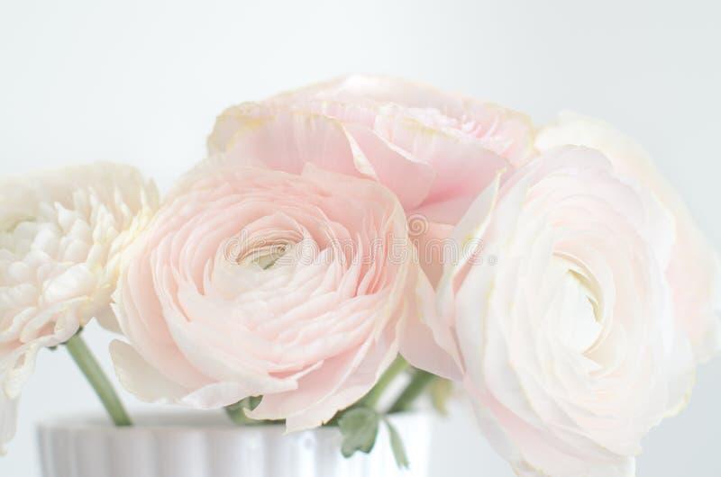 Ljust - rosa persisk smörblommaRanuncuus grupp i vas fotografering för bildbyråer