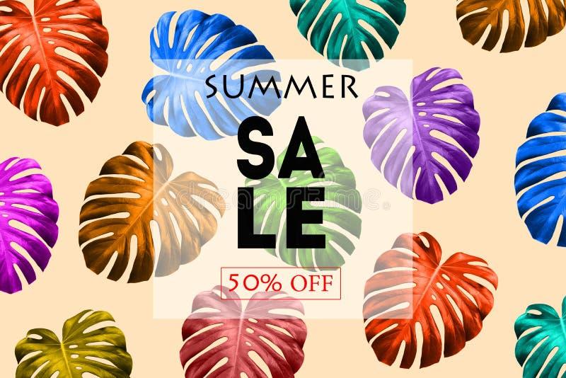 Ljust sommarförsäljningsbaner med tropiska färgrika sidor Exotisk färgrik design för reklambladet, baner, affisch, inbjudan, webs arkivfoton