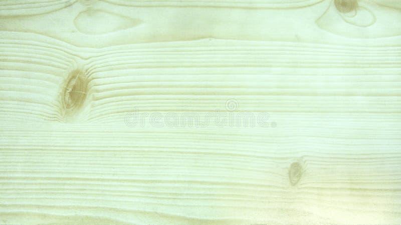 ljust trä arkivfoto
