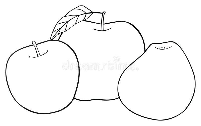 Ljuv trädgård - uppsättning av tre äpplen med ett blad royaltyfri illustrationer