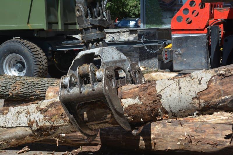 LKW-Krangriffholz Hölzerner chipper Reißwolf Eine Erntemaschine ist eine Art schweres Forstwirtschaftsfahrzeug, das in der Schnit stockfotografie