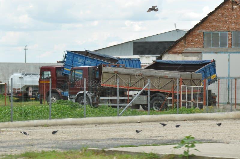 LKWs außerhalb des Bauernhofes lizenzfreies stockfoto