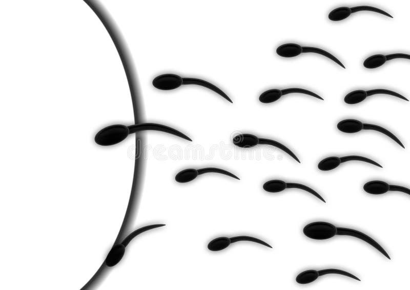 Esperma y huevo Plantillas PPT animado y Design ID