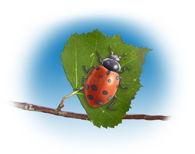 Lladybug stock illustratie