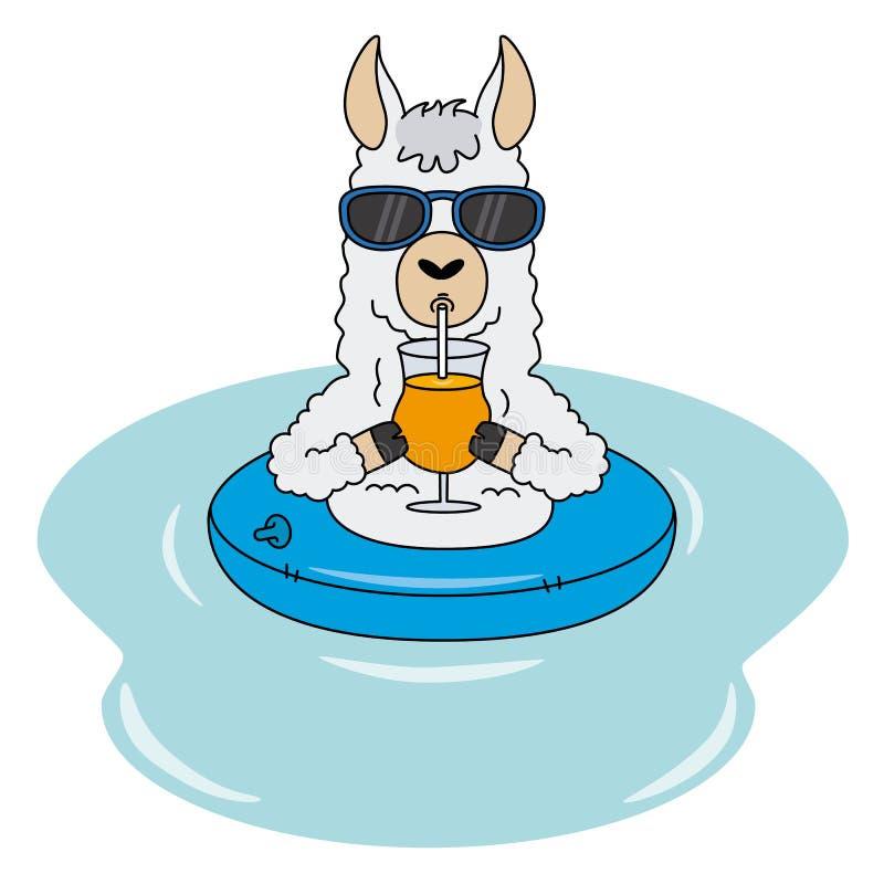 Llama με το επιπλέον σώμα, τα γυαλιά ηλίου και ένα ποτό διανυσματική απεικόνιση