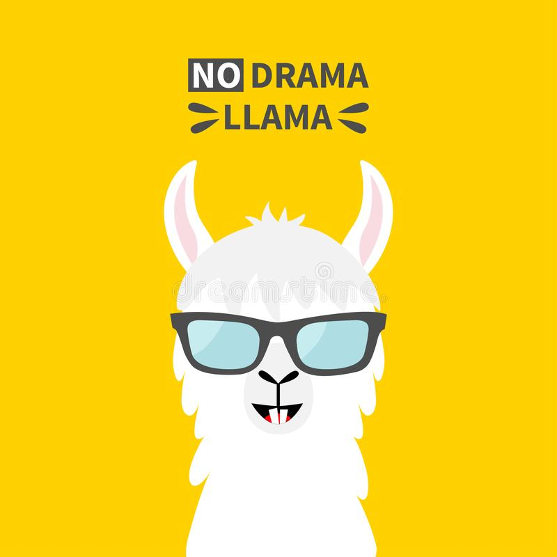 Llama alpaca animal face wearing sun glasses. No drama. Cute cartoon funny kawaii character. Childish baby collection. T-shirt, vector illustration