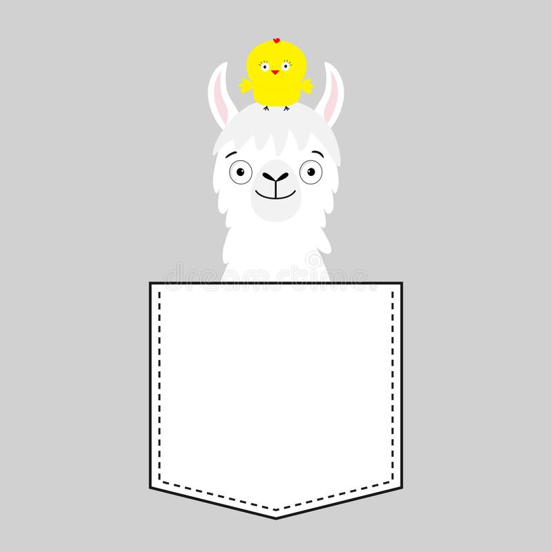 Llama alpaca face head in the pocket. Chicken. Cute cartoon animals. Kawaii character. Dash line. White and black color. T-shirt. Design. Baby gray background stock illustration