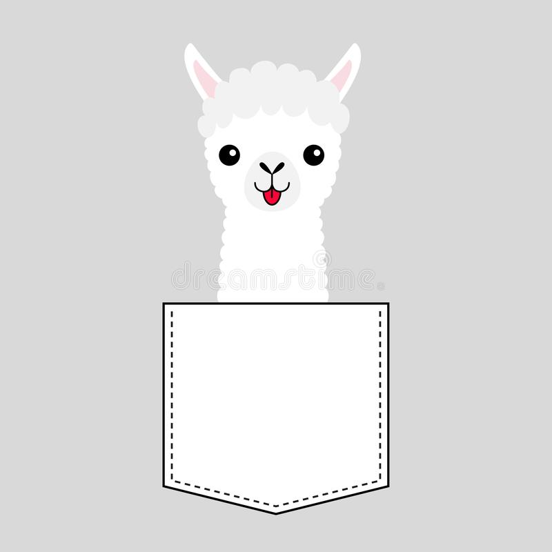 Llama alpaca face head in the pocket. Cute cartoon animals. Kawaii character. Dash line. White and black color. T-shirt design. Baby gray background. Isolated royalty free illustration